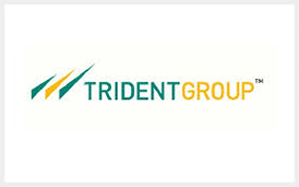 trident-group
